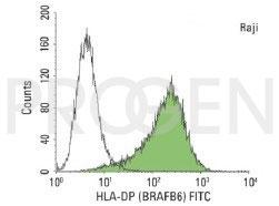 anti-MHC II DP mouse monoclonal, BraFB6, purified